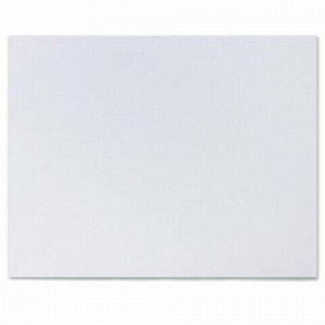 Холст на картоне BRAUBERG ART CLASSIC, 45*55см, грунтованный, 100% хлопок, мелкое зерно, 191021