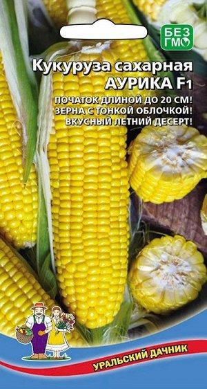 Кукуруза сахарная АУРИКА F1