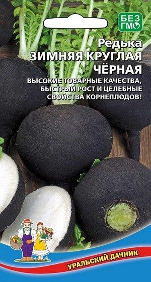 Редька Зимняя чёрная круглая