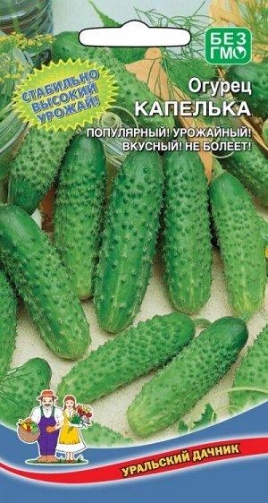 Огурец Капелька (УД) (открытый грунт, 9 см, кр/буг, болезнеустойчивый)