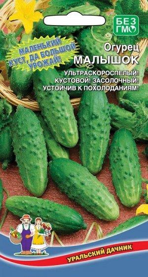 Огурец Малышок (УД) Новинка!!!