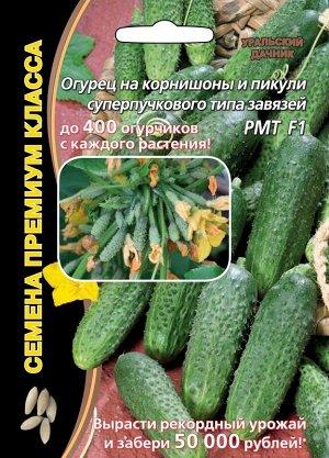 Огурец РМТ F1 ® (УД) (Супербукетный тип,отличается неимоверным множеством зеленцов на растении,дружным начальным плодоношением,длительной массированной отдачей урожая,жаростойкий и очень вкусный)