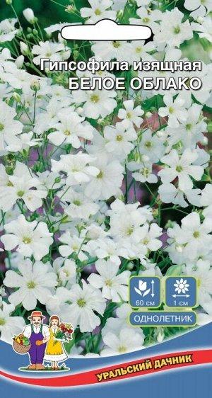 Цветы Гипсофила изящная Белое облако (УД)(однолетнее,  кустистое,  цветение обильное,  но кратковременное)