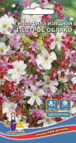 Цветы Гипсофила Изящная Смесь (Марс) (цветет обильно, возможны повторные посевы)