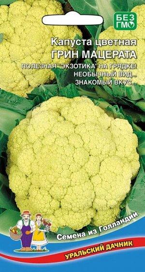 Капуста Грин Мацерата (УД) (ГОЛЛАНДИЯ,сорт оригинал!головка насыщенно зелёная,очень популярная!)