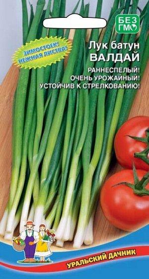 Лук батун Валдайский/Валдай (УД) Новинка!!!