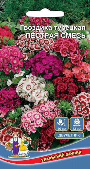 Цветы Гвоздика Перистая Смесь (Марс) (25-30 см, цветки белые, розовые, красные)