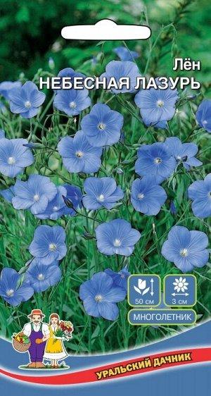 Цветы Лён Небесная Лазурь (УД) (крупноцветковый нежноголубой)