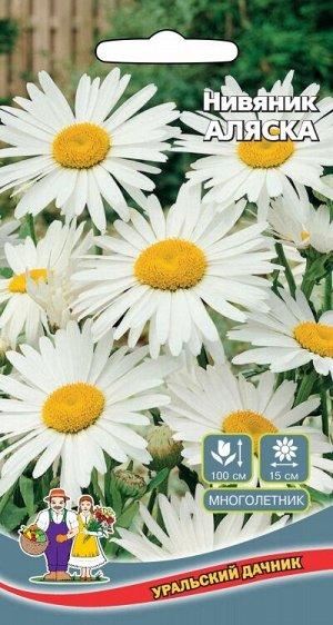 Цветы Нивяник Аляска крупный (Марс) (высота 60-100 см, цветки 15 см, зимостойкий)
