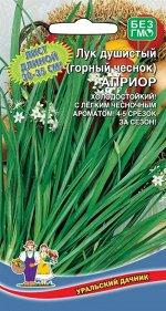Лук Душистый Априор (горный чеснок) (УД) (многолетний,для многократной срезки зелени,ароматом чеснока)