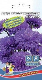 Цветы Астра Маришка (Марс) (махровая,сине-фиолетовая,выс.60см.,д.7см)