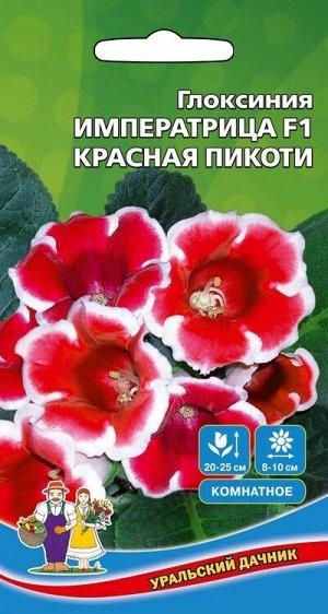 Цветы Глоксиния Императрица F1 Красная Пикоти (УД) Новинка!!!