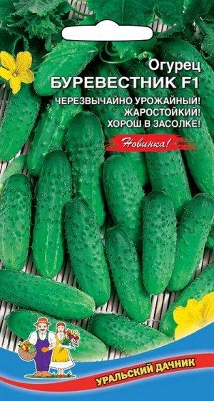 Огурец Буревестник F1 (УД) Новинка!!!