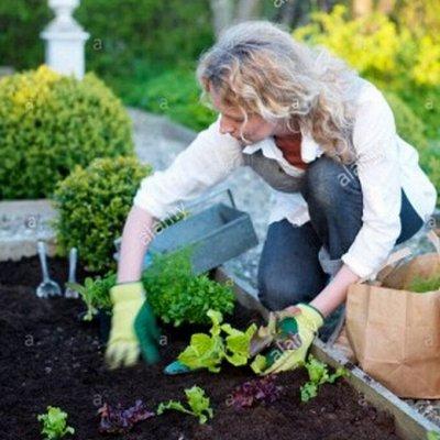 Дачный сезон🏡Товары для сада и огорода🌳 Семена на ОСЕНЬ 🍂