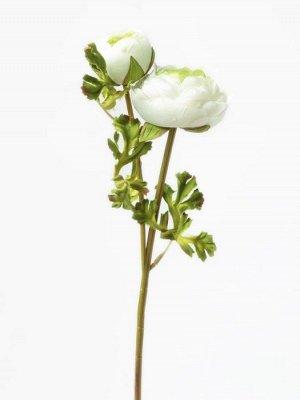 """Цветок """"Ranunculus Bowd"""" Floox, 15х7,5х50 см, цв.белый, комбинированные материалы"""
