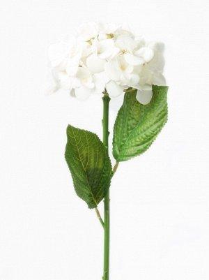 "Цветок ""Hydrangea Eype"" Floox, 16х16х50 см, цв.белый, комбинированные материалы"