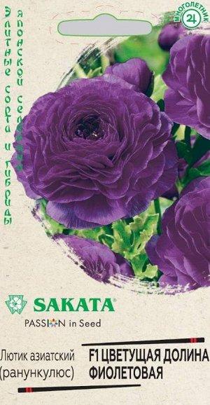 Лютик (Ранункулюс) Цветущая долина фиолетовая F1 3 шт. пробирка, серия Саката