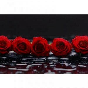 "Кухонный фартук ПВХ ""Розы на камне"" 3000x600мм"