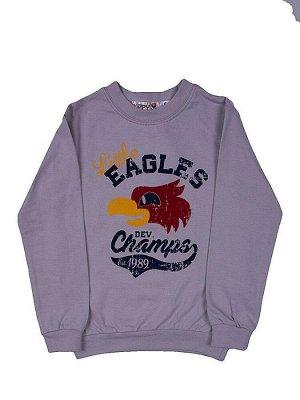 """Толстовки для мальчиков """"Eagles"""", цвет Серый"""