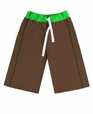 Бриджи коричневые для мальчика Цвет: коричн.+зеленый