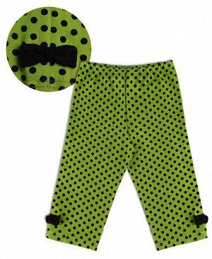 Зеленые бриджи для девочки Цвет: зеленый