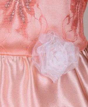 Персиковое платье для девочки Цвет: оранжевый