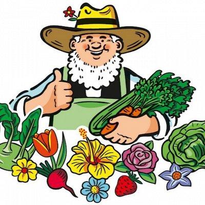 Скидки на все до -80%🚚 Одежда, обувь, продукты — Сад и огород  — Сад и огород