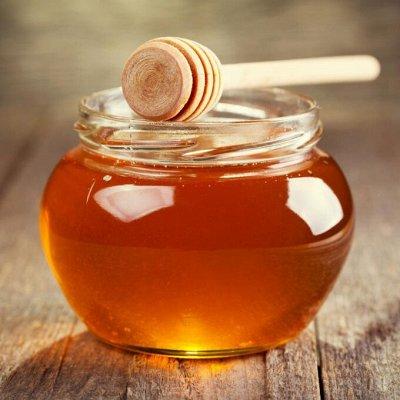 Приморский Вкусный и Полезный Мёд-2020. Быстрая раздача — Мёд Таёжный АРАЛИЕВЫЙ СБОР 2020 (УКРЕПЛЯЕМ ИММУНИТЕТ) — Мед