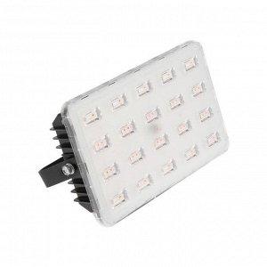Прожектор ФИТО светодиодный Luazon Lighting, для растений, 50 Вт, IP65, 220В