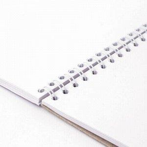 Скетчбук, белая бумага 100г/м2, 297х410мм, 50л, гребень, жёсткая подложка, BRAUBERG ART DEBUT,110980