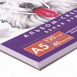 Скетчбук, белая бумага 120г/м2, 145х205мм, 40л, гребень, жёсткая подложка, BRAUBERG ART DEBUT,110988