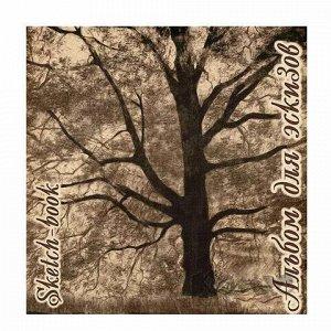 """Альбом для эскизов 210х210 мм, 40 л., 70 г/м2, крафт-бумага, на скобе, """"Дерево"""", ЭД"""