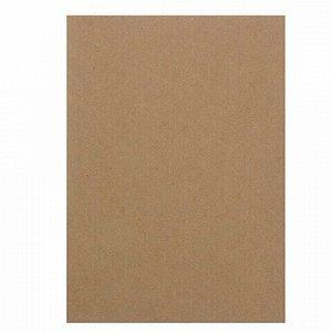 """Бумага для эскизов А4 210х297 мм, 20 л., 200 г/м2, крафт-бумага, """"Паллацо"""", БЭП4/20"""