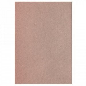 Бумага для эскизов БОЛЬШОГО ФОРМАТА (297х420 мм) А3, 20 л., крафт-бумага, 200 г/м2, Паллацо, БЭП3/20
