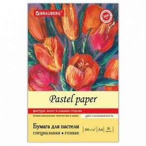"""Бумага для пастели А4, 20л, 200 г/м2, тонированная бумага слоновая кость ГОЗНАК """"Холст"""", BRAUBERG ART """"CLASSIC"""", 126306, 126307"""