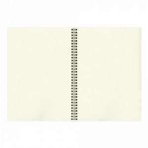 Скетчбук, слоновая кость 150г/м2, 210х297мм, 30л, гребень, BRAUBERG ART CLASSIC, 128947