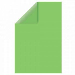 Картон цветной А4 ТОНИРОВАННЫЙ В МАССЕ, 50 листов, ЗЕЛЕНЫЙ, в пленке, 220 г/м2, BRAUBERG, 210х297 мм, 128984
