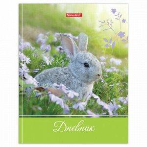 """Дневник 5-11 класс 48 л., твердый, BRAUBERG, глянцевая ламинация, с подсказом, """"Милый кролик"""", 105575"""