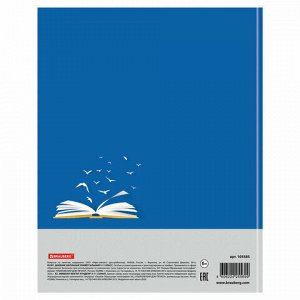 """Дневник 5-11 класс 48 л., твердый, BRAUBERG, глянцевая ламинация, с подсказом, """"Сила в знании"""", 105585"""