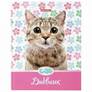 """Дневник 5-11 класс 48 л., твердый, BRAUBERG, выборочный лак, с подсказом, """"Милый котенок"""", 105593"""