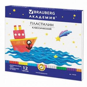 """Пластилин классический BRAUBERG """"АКАДЕМИЯ"""", 12 цветов, 240 г, со стеком, картонная упаковка, 103256"""