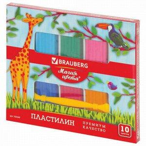 """Пластилин классический BRAUBERG """"МАГИЯ ЦВЕТА"""", 10 цветов, 250 г, со стеком, ВЫСШЕЕ КАЧЕСТВО, 103349"""