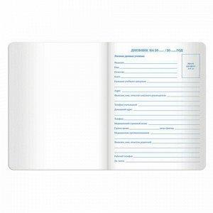 """Дневник 1-11 класс 48 л., обложка кожзам (твердая), тиснение, аппликация, BRAUBERG, """"ВКУСНЯШКИ"""", 105487"""