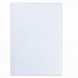 Бумага писчая в клетку, А4, 55 г/м2, 100 л., Россия, белизна 92-96% (ISO), 110394