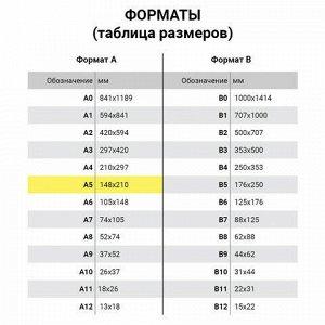 Бумага офисная DATA COPY, МАЛОГО ФОРМАТА (148х210 мм), А5, 80 г/м2, 500 л., марка А+, Германия, белизна 170%, 521839