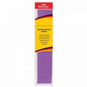 Бумага гофрированная (креповая) СТАНДАРТ, 25 г/м2, фиолетовая, 50х200 см, европодвес, BRAUBERG, 124733