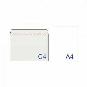 Конверты С4 (229х324 мм), отрывная лента, 100 г/м2, КОМПЛЕКТ 25 шт., BRAUBERG, 121852