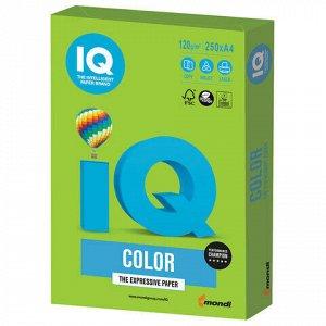 Бумага цветная IQ color, А4, 120 г/м2, 250 л., интенсив, ярко-зеленая, MA42