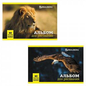 """Альбом для рисования, А4, 40 л., скоба, обложка картон, BRAUBERG, 200х283 мм, """"Дикие животные"""" (2 вида), 104876"""