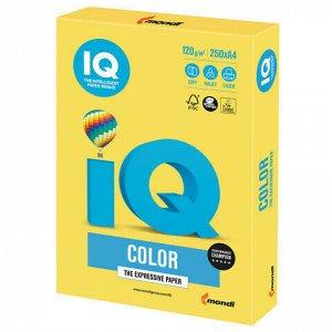 Бумага цветная IQ color, А4, 120 г/м2, 250 л., интенсив, канареечно-желтая, CY39